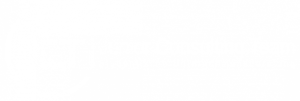 JCT Junior Consulting Team Logo weiß